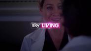 Sky Living ID - Grey's Anatomy - 2013