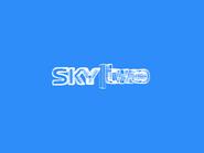 Sky Two ID - Wireframe - 2002