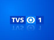 TVS1 ID 2002