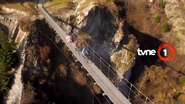 Tvne1 id 2016 bridge