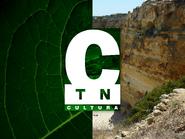 TN Cultura ID - 1998 - 2