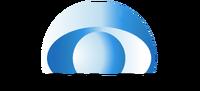 BDSG logo 1977