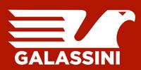 Galassini 2017