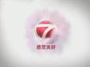 NTV7 ID - Smoke - 2012 - Chinese