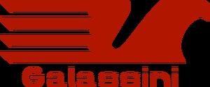 Galassini 1995