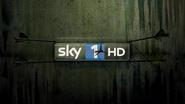 Sky 1 ID - Arrow - 2012