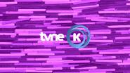TVNE K Interim ID 2016 2