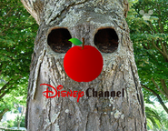 Disney Channel ID - Woodland (2000)