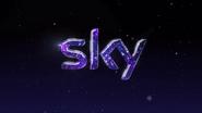 Sky Christmas 2012 ID