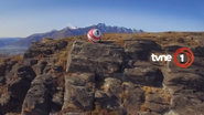 Tvne1 cliff id 2016