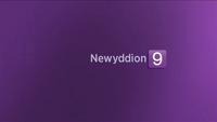 Newyddion 2018