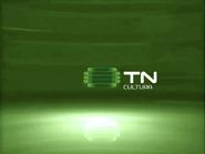 TN Cultura ID 2004