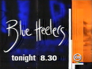 IBS Blue Heelers promo 1999