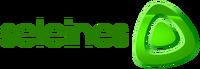 Seleines Television 2002