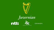 Juvernian retro startup 2002