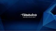 TeitelboimbAd2013