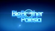 Big Brother Palesia open 2014