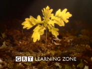 GRT Learning Zone ID 1997