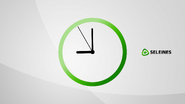 Seleines clock 2014