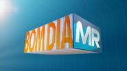 BDMR wide 2013