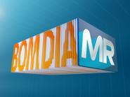 BDMR intro 2013
