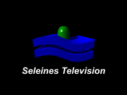 Seleines Television 1986