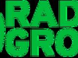 Araiguma Radio Group