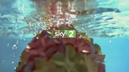 Sky 2 Pool breakbumper 2011 3