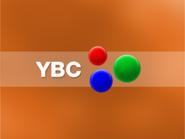 YBC 2004 Generic Ident