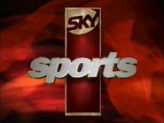 Sky Sports ID 1995