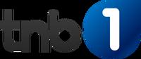 TNB1 2016