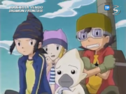 Digimon Frontier captura en Signal