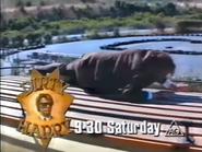 TVNE2 promo - Dirty Harry - 1995