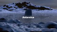 Antarsica ID - Nighttime - 2005