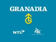 Granadia retro startup 1995