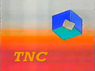 TNC White and red gradient ad id