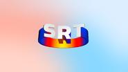 Mad TV SRT spoof 2019