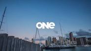 TVNE1 ID - Skyline - 2013