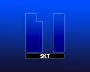 SKT1 1991 ID