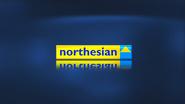 Northesian breakbumper 2002