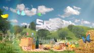 SRT ad id - Picnic - 2018