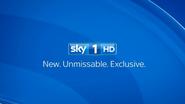 Sky 1 sting 2013
