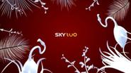 Sky Two ID - Jungle - 2004