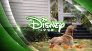 Disney Channel ID (Dog, 2014)