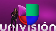 Univision ID - Purple - 2017