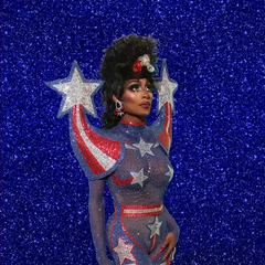 Stars and Stripes Forever Look