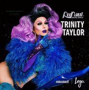 Trinity-taylor-fakepromo2