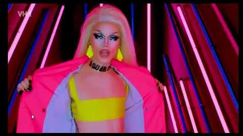 MEET THE QUEENS - AQUARIA