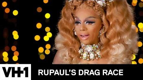 Meet Aja All Stars 3