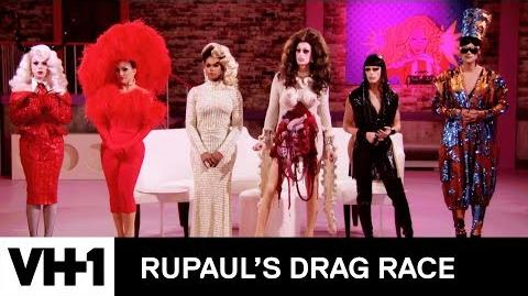The Eliminated Queens Vote